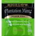 Bigelow Plantation Mint Tea F20-1623808-0000 - Single tea bag in sealed packet.