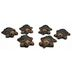 Cement Mini Turtles (6 pc set) U03-0209232-0096-6 mini turtles. Garden décor.